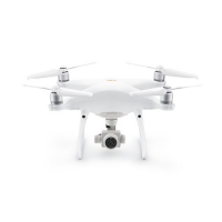 Drone Phantom 4 Pro V2.0 (Normal y Plus) DJI